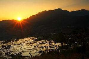 Terraços de arroz yang com nascer do sol
