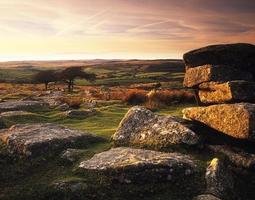 Combestone tor in evening light