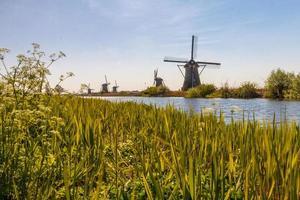 Molens van Kinderdijk photo