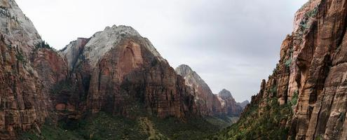 Zion Canyon with a Carpet of Trees