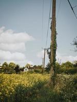Line post near a house