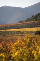 Mountains near the village of Roquebrun,Languedoc, southern Fran photo