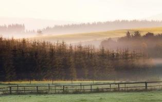 manhã nublada, amanhecer, paisagem perto de winterberg, colinas, campo, sauerland, alemanha