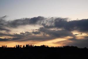 silueta de árboles bajo el cielo nublado durante la puesta de sol foto