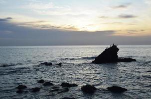 silueta de aves en formación rocosa en el mar