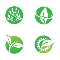 conjunto de logotipo de hoja vector