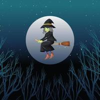 Witch or wizard riding broomstick