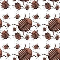 Beetle insect seamless background
