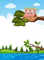 polluelos en el nido en la rama de un árbol