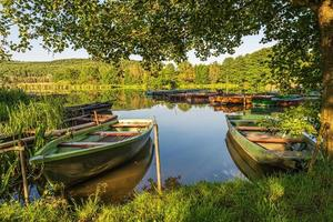 Under trees, boats in the harbor at Lake photo