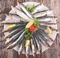 fresh sardine photo