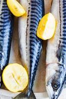Caballa de pescado fresco con limón en la placa de metal