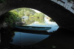 EUROPE MONTENEGRO SKADAR LAKE photo