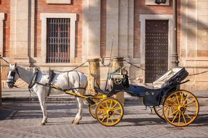 Horse carriage in Seville, Andalusia, Spain