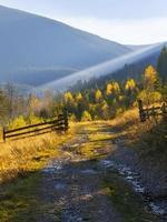 Road in highlands Carpathians. photo