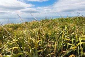 vista costera desde la cima de la montaña. Nueva Zelanda foto