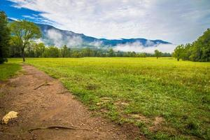 Cades Cove Valley