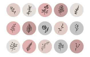 Pastel highlight botanical herb icon collection vector