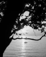 Escala de grises de árboles y personas en barco. foto