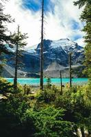 lago cerca de montañas nevadas