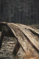 Brown wooden footbridge in the woods