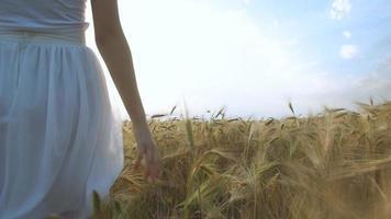 giovane ragazza che cammina attraverso il campo e tocca il grano.