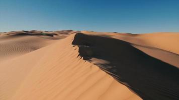 paisagem do deserto do saara, dunas maravilhosas no início da manhã video