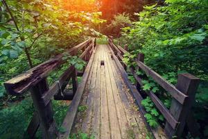 Old broken wooden bridge photo