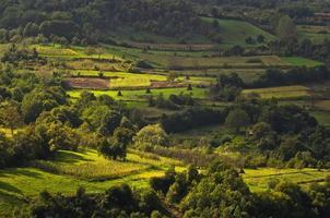 Landscape of Jelasnica gorge plateau at sunny autumn afternoon