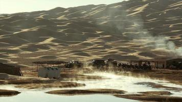 paisagem do deserto do Saara. ain ouadette oásis. video