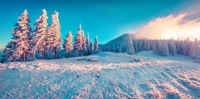 hermoso amanecer de invierno en las montañas.