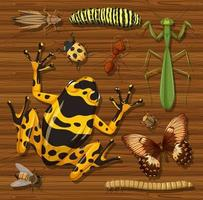Set of different insects and creatures on background