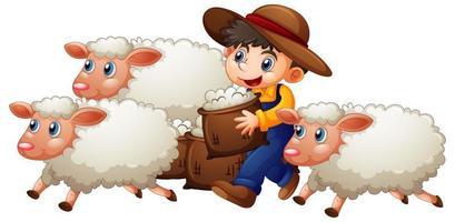 Un niño con tres lindas ovejas sobre fondo blanco. vector