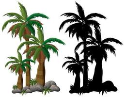 Palm tree and its silhouette on white background