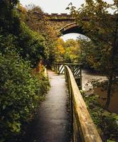 árboles verdes al lado del puente
