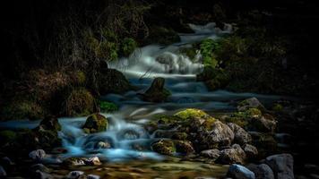 cascadas en un bosque oscuro