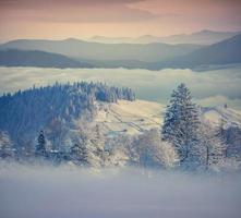Beautiful winter morning in the foggy mountains