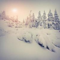 amanecer de invierno brumoso en las montañas.