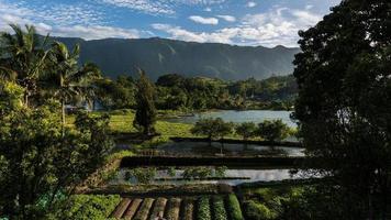 explorando la isla de sumatra en indonesia foto