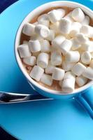 blue cup of cocoa with marshmallow photo