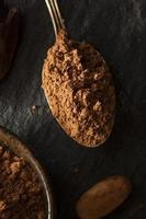 polvo de cacao orgánico crudo foto
