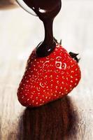 strawberry and chocolate photo
