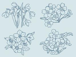 Winter flowers outline vector