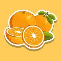 Fresh cartoon orange fruit set vector