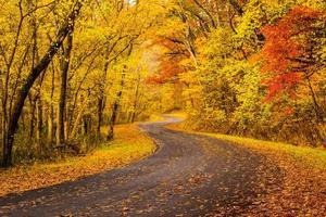 Autumn Colors in Ohio photo