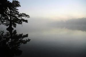 se acerca la niebla
