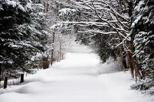 Unplowed country road after heavy snow photo