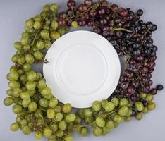 Top view of table grapes around white plate on gray background photo