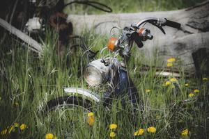 Motorcycle in a flower field photo
