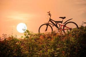 bicicleta de montaña con un cielo colorido y una puesta de sol foto